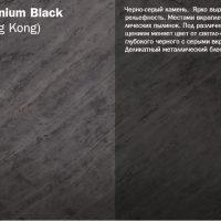 Platinium Black_big
